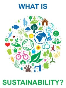 What is sustainability? - Video